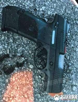 弗罗里达州警员们带上警犬参加枪战,其中一只狗狗的行为让所有人都超级感激!